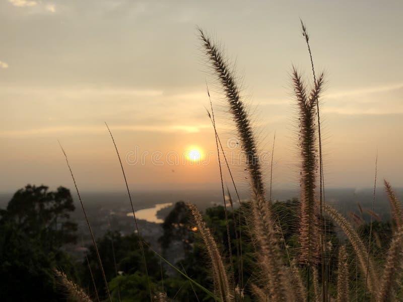 Coucher du soleil de la montagne d'herbe images libres de droits