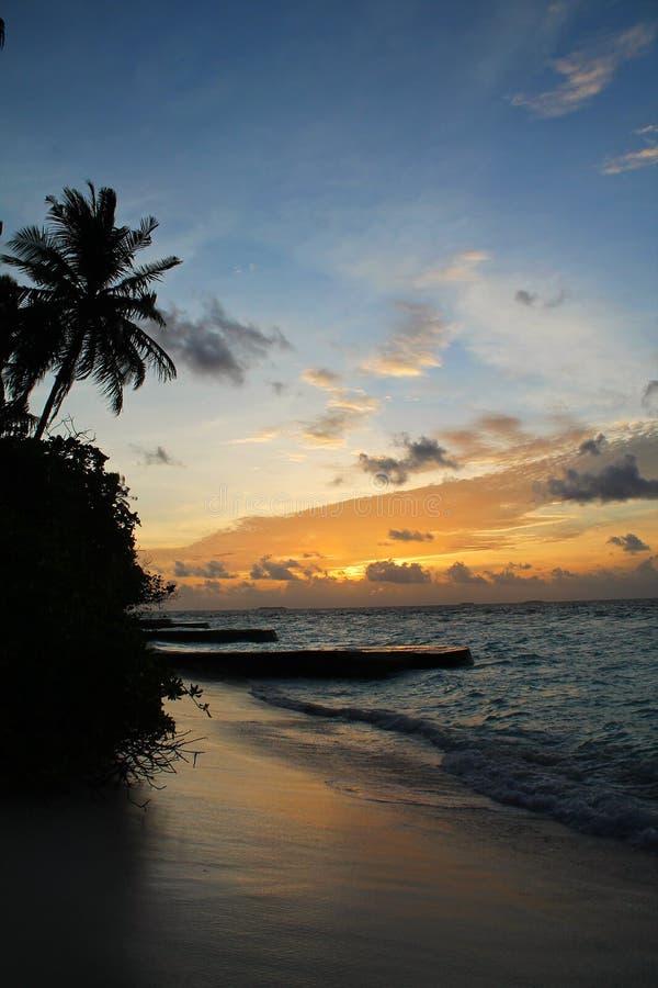 Coucher du soleil de la plage d'une île tropicale en Maldives, avec les palmiers et l'océan photos stock