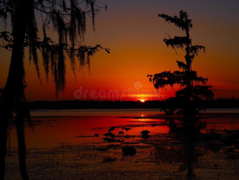 Coucher du soleil de Martin de lac image stock