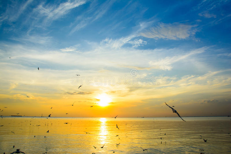 Coucher du soleil de mer photo stock