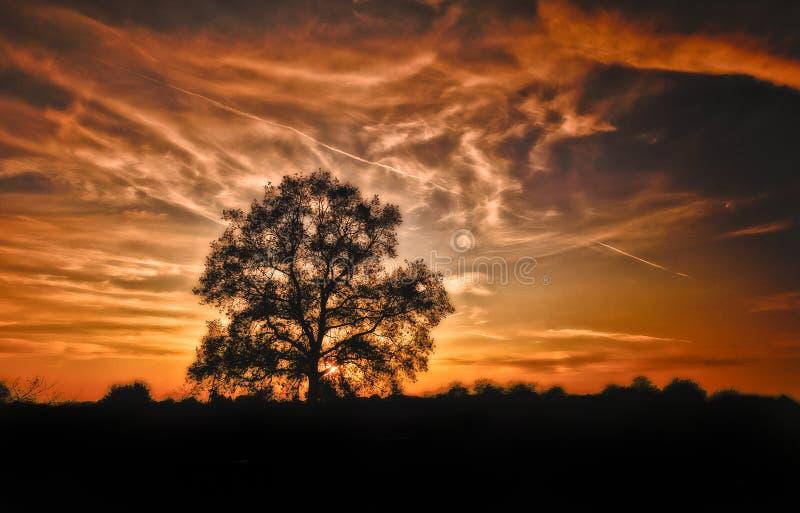 Coucher du soleil de novembre photos stock