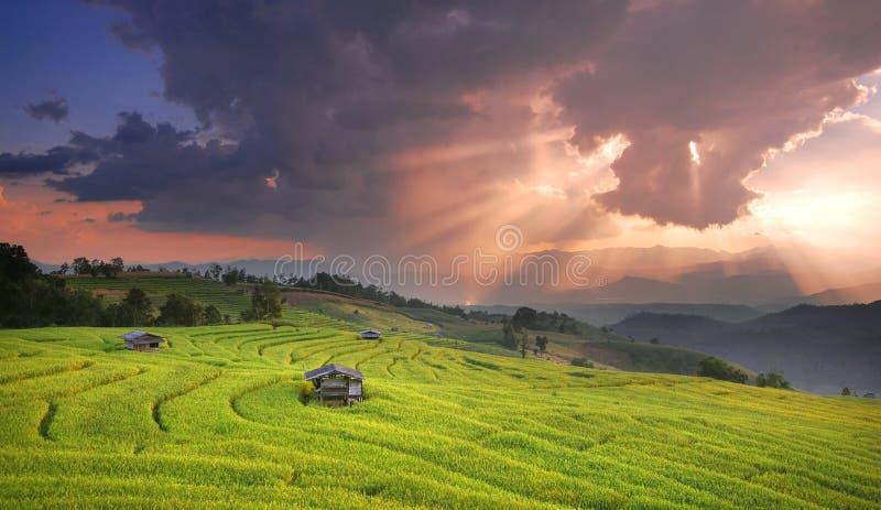 Coucher du soleil de paysage de montagne dans le domaine de riz photos stock