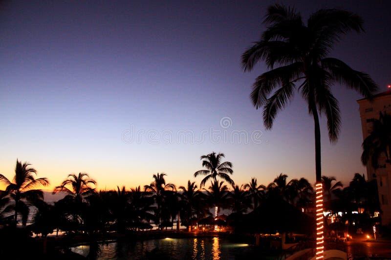 Coucher du soleil de paysage sur la plage avec des palmiers photos stock