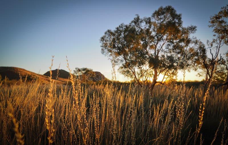 Coucher du soleil de Pibara photographie stock