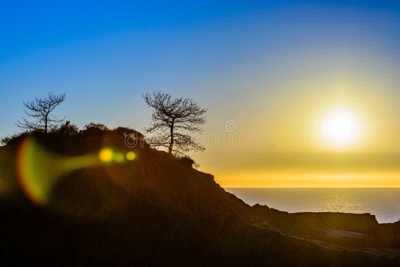 Coucher du soleil de pin de Torrey photos libres de droits