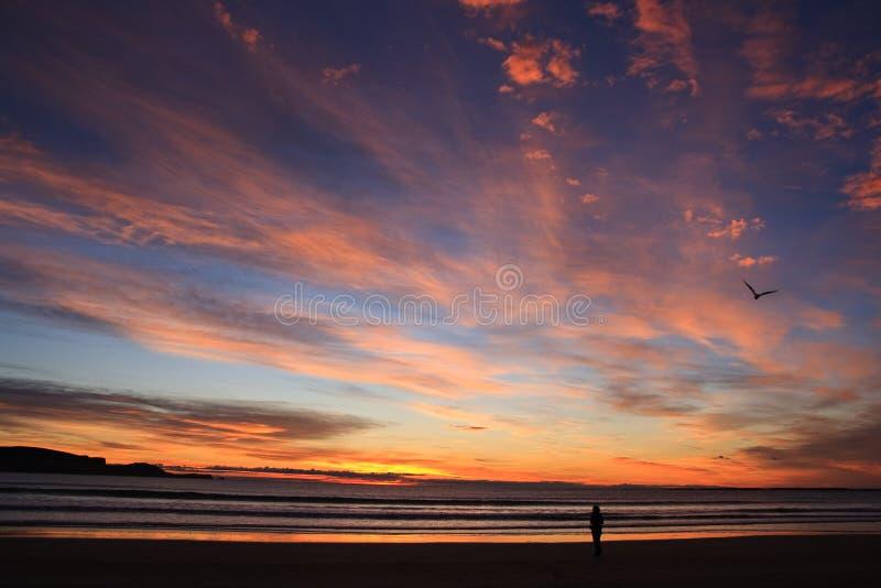 Coucher du soleil de plage photo stock