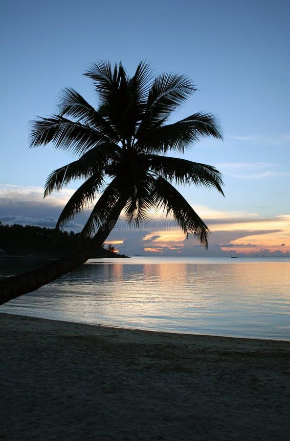 Coucher du soleil de plage - détendant photo stock