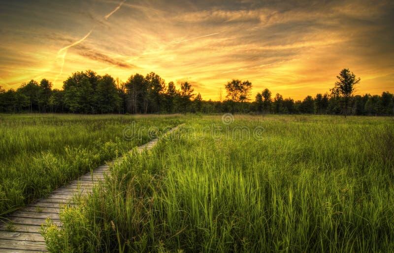 Coucher du soleil de prairie d'Irwin photographie stock