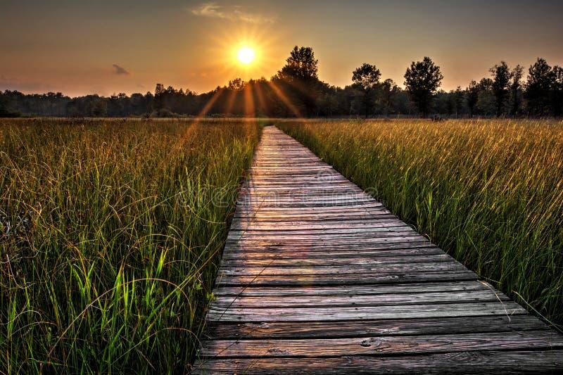 Coucher du soleil de promenade de prairie image libre de droits