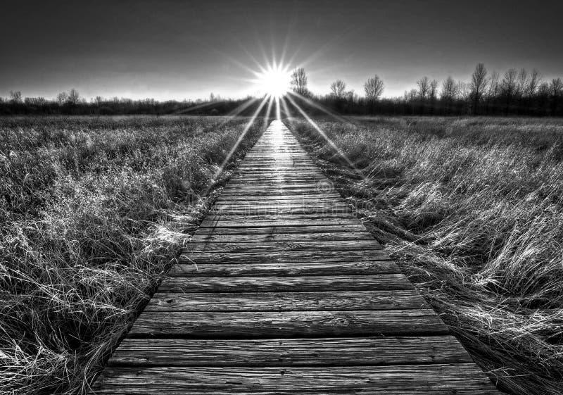 Coucher du soleil de promenade de prairie images stock