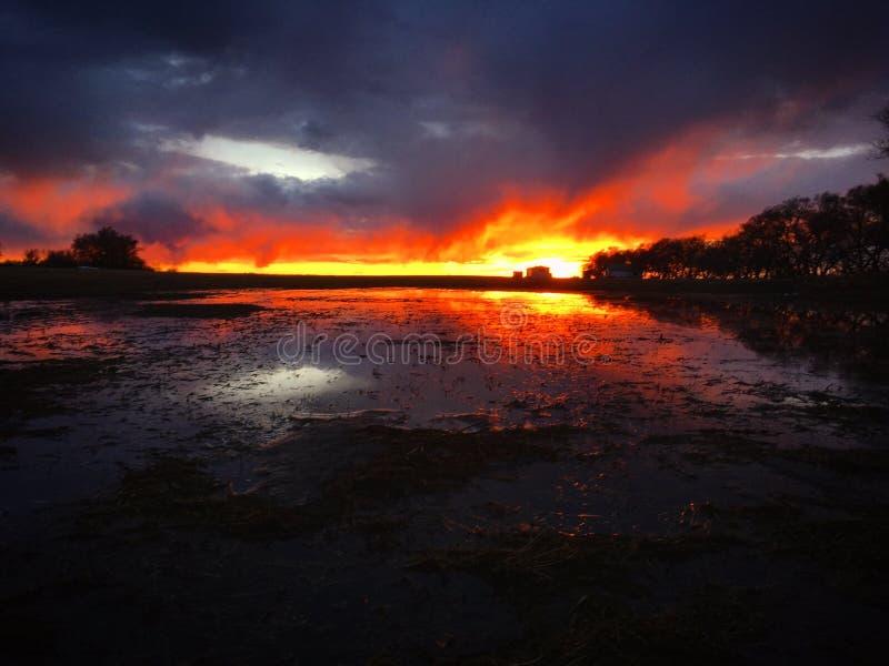 Coucher du soleil de Saskatchewan photographie stock libre de droits