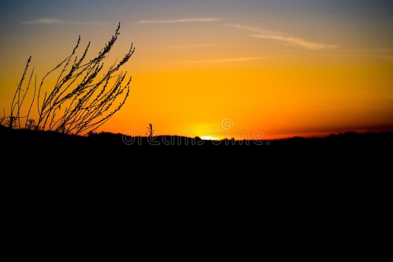 Coucher du soleil de silhouette de Ciel-vue de Los Angeles photo stock