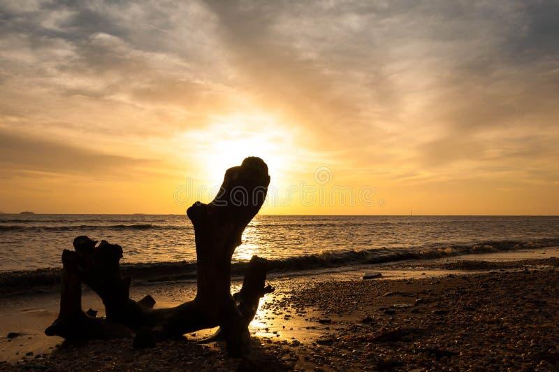 Coucher du soleil de silhouette tiré à Penang, Malaisie images stock