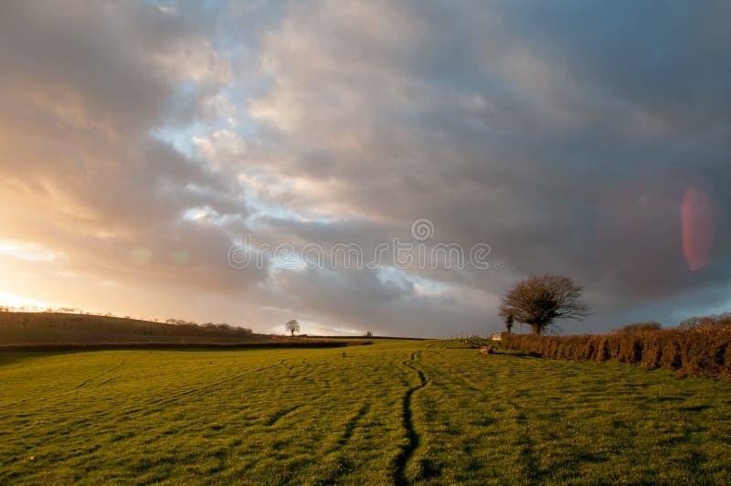 Coucher du soleil de Starburst au-dessus des champs images stock
