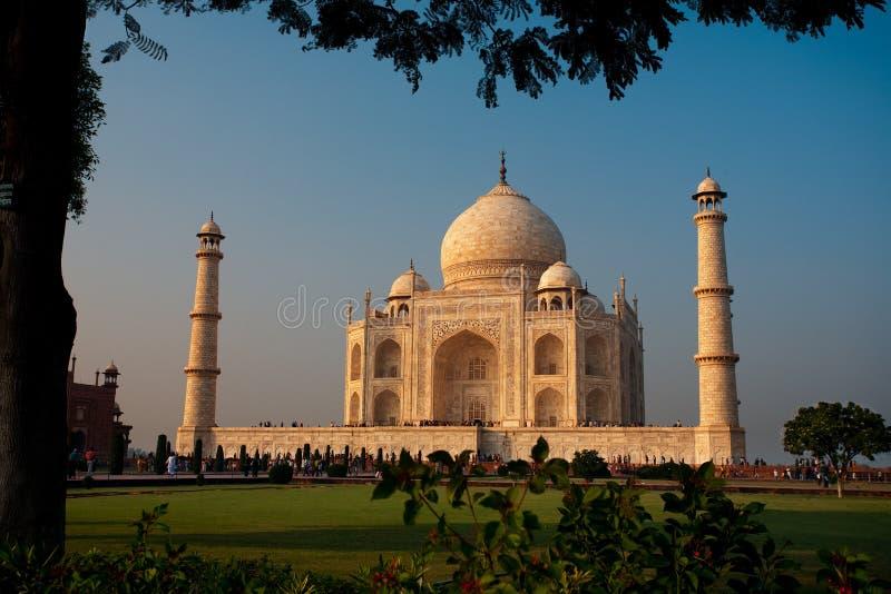 Coucher du soleil de Taj Mahal de soirée encadré par Tree photos stock