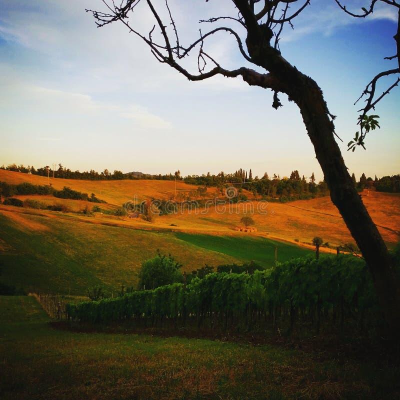 Coucher du soleil de vicchio de Mugello Florence Borgosanlorenzo Italy Toscane de paysage photos libres de droits