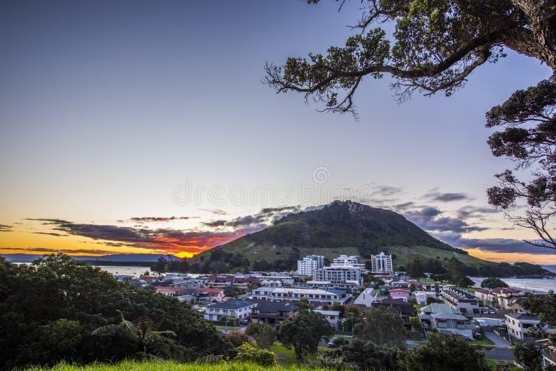 Coucher du soleil de ville de Maunganui de bâti photos libres de droits