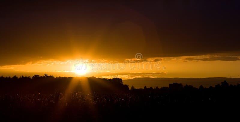 coucher du soleil de zone de maïs images stock