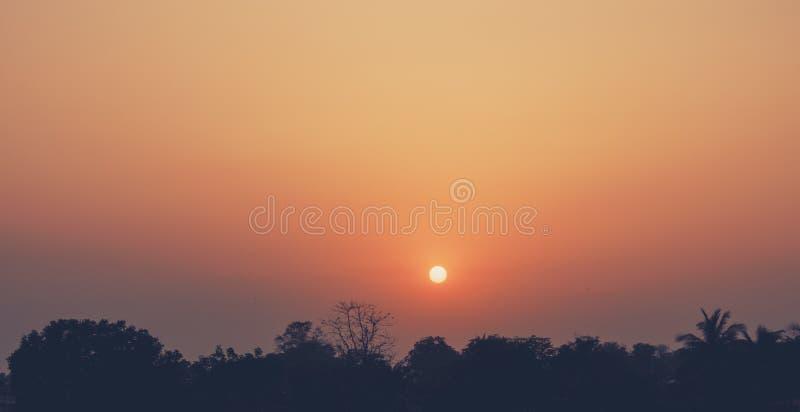 Coucher du soleil derrière la soirée crépusculaire de forêt photographie stock
