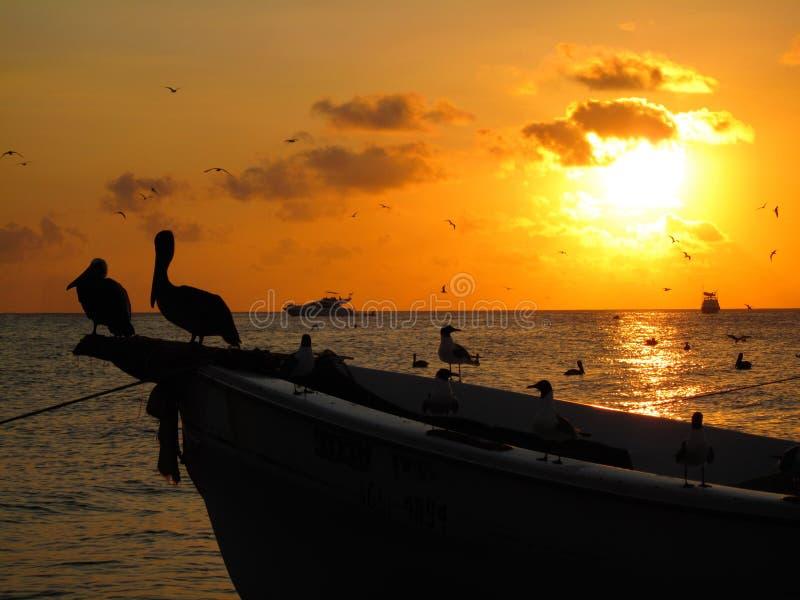 coucher du soleil des Caraïbes photo stock