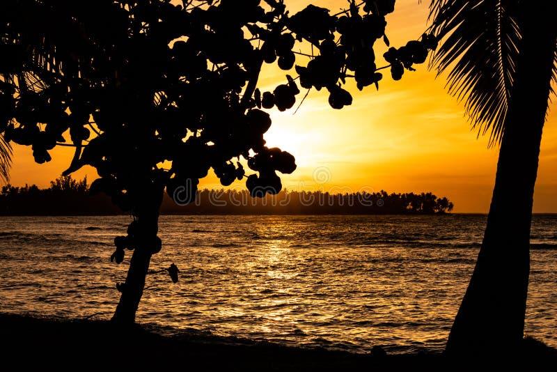 Coucher du soleil des Cara?bes sc?nique dans Las Terrenas, R?publique Dominicaine  images libres de droits