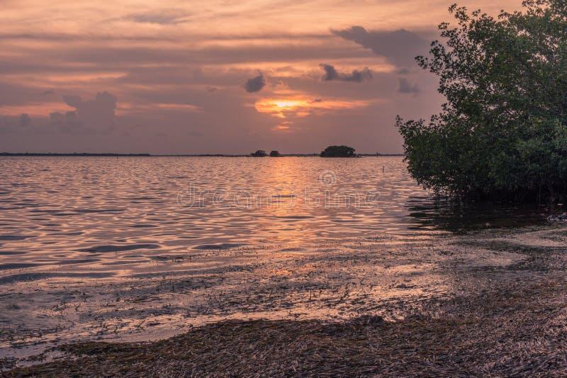 Coucher du soleil en île des clés de la Floride images libres de droits