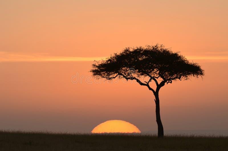 Coucher du soleil en Afrique photo stock