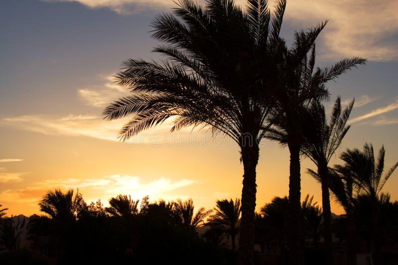 Coucher du soleil en Egypte photographie stock