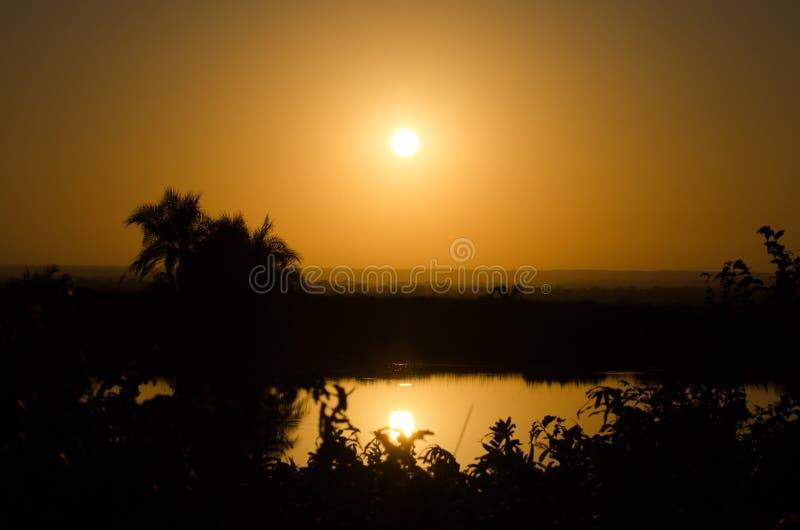 Coucher du soleil en parc de kruger images stock
