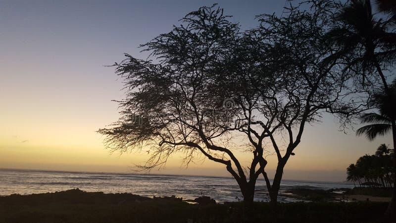 Coucher du soleil et silhouette chez Ko Olina, Hawai& x27 ; I - aucun edts photographie stock libre de droits