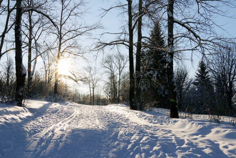 Coucher du soleil gentil dans un jour d'hiver images libres de droits