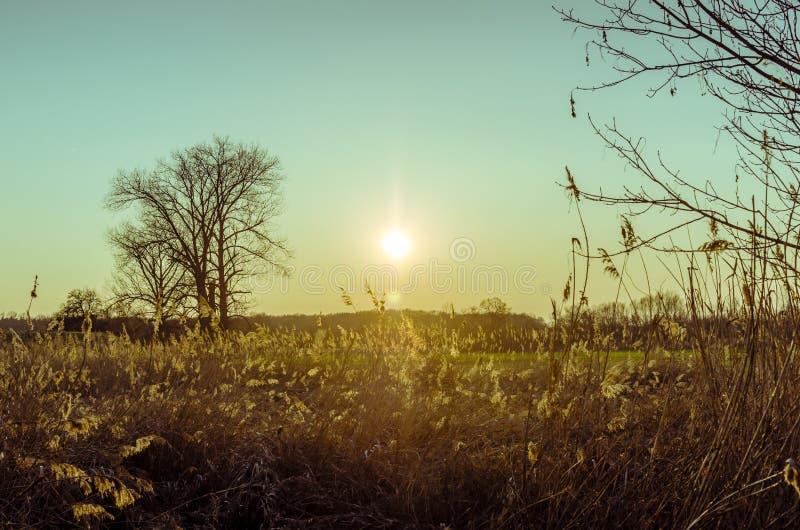 Coucher du soleil givré d'un jour froid sans nuages photographie stock