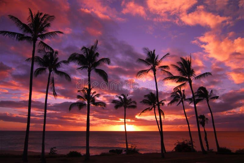 coucher du soleil hawaïen de Molokai images stock