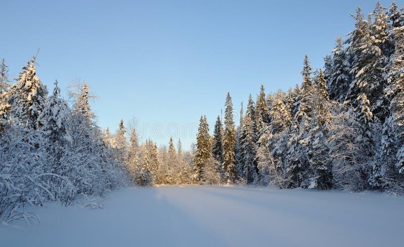 Coucher du soleil hivernal sur le lac photo libre de droits