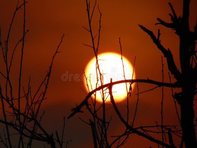 Coucher du soleil magique photos libres de droits
