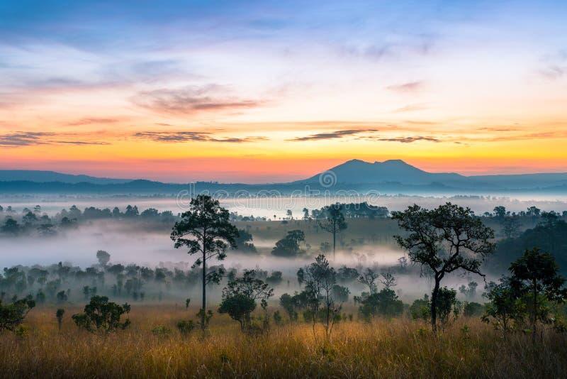 Coucher du soleil majestueux dans le paysage de montagnes photos libres de droits