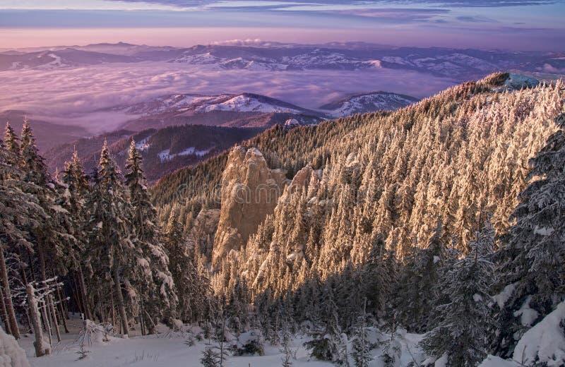Coucher du soleil mystique d'hiver photographie stock