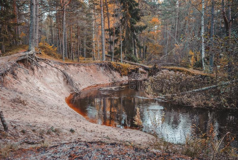 Coucher du soleil obscurci d'automne sur les banques d'une rivière image stock