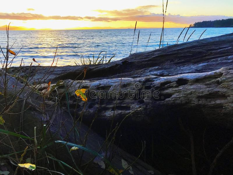 Coucher du soleil Pacifique de flambage à la plage française, AVANT JÉSUS CHRIST image stock