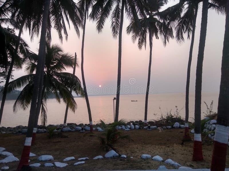 Coucher du soleil par des cocotiers images libres de droits