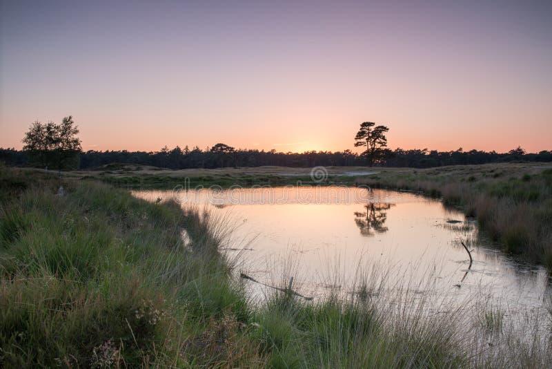 Coucher du soleil par le lac images stock