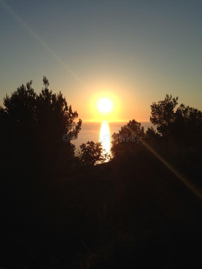 Coucher du soleil par les arbres images stock