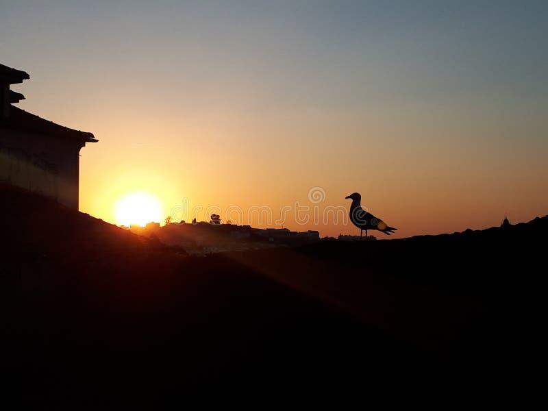 Coucher du soleil ? Porto images stock