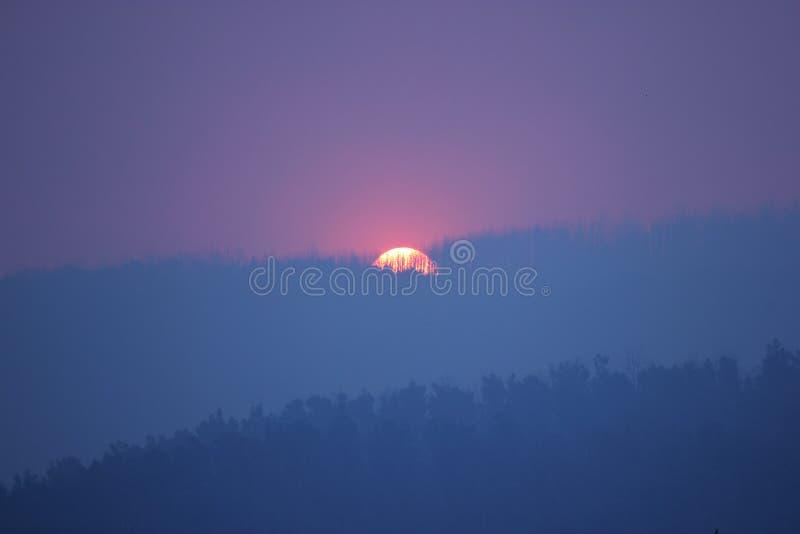 Coucher du soleil pourpre de brume de fumée par des arbres de montagne image libre de droits