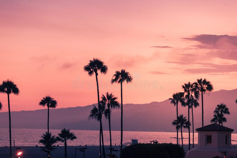 Coucher du soleil pourpre en Santa Monica avec des silhouettes des paumes images libres de droits