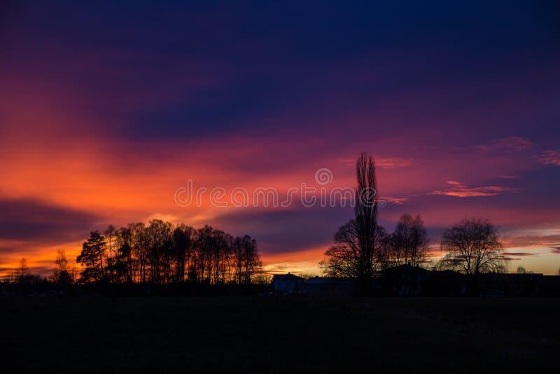 Coucher du soleil pourpre et orange derrière des arbres, Allemagne images libres de droits