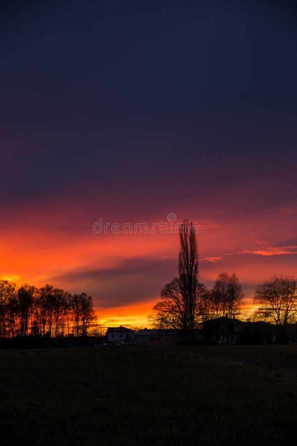 Coucher du soleil pourpre et orange derrière des arbres, Allemagne photos stock