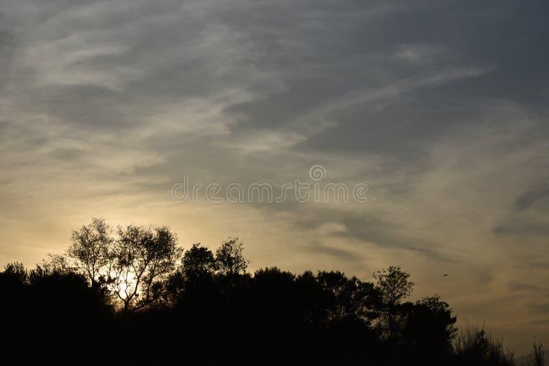 Coucher du soleil près de barrage Islamabad de Rawal photographie stock libre de droits