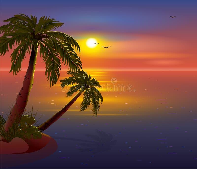 Coucher du soleil romantique sur l'île tropicale Palmiers, mer, ciel foncé et mouettes illustration libre de droits