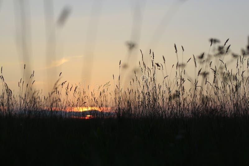 Coucher du soleil rouge gentil photos libres de droits